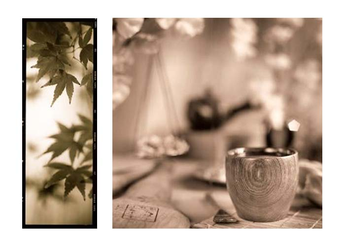 ALAN BLAUSTEIN PHOTOGRAPHY | Recent Still Life: Wall Decor And Publications